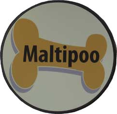 Maltipoo Magnet